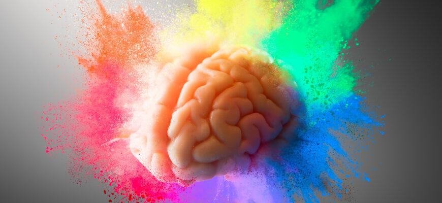 5 stopniowy proces wchłaniania dowolnej wiedzy