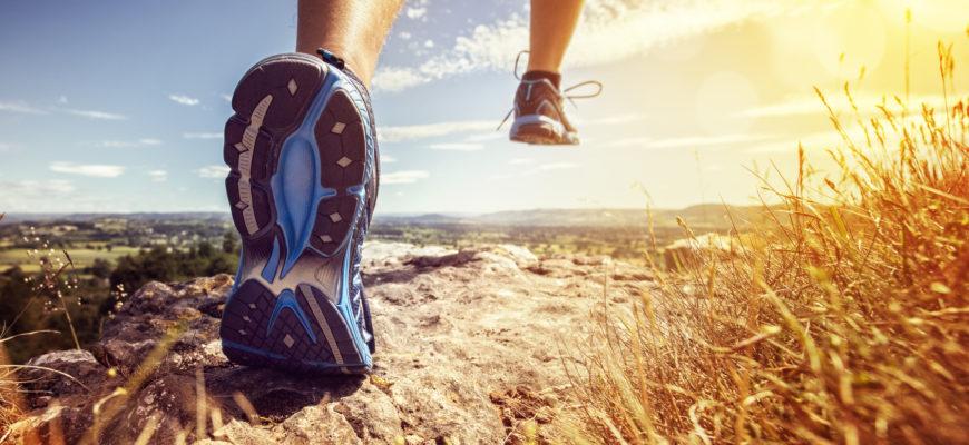 Wpływ biegania na organizm