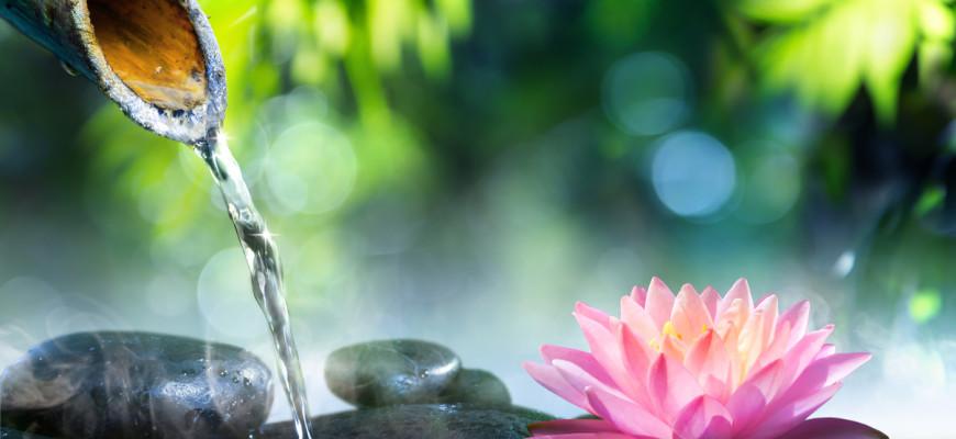 Umysł Zen, Medytacja Zen
