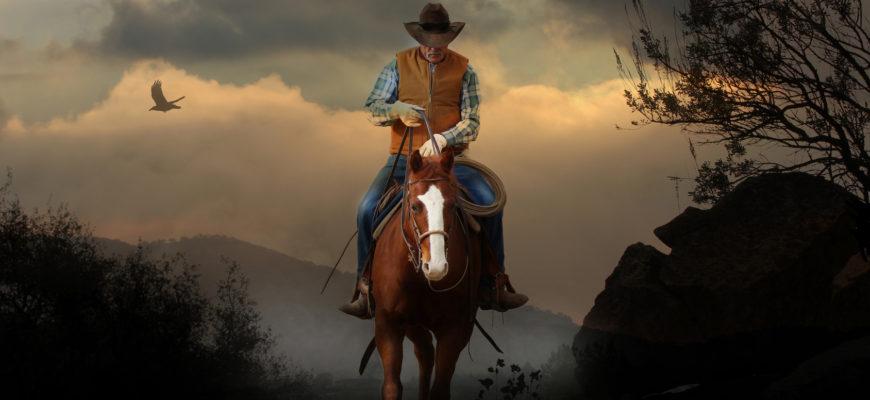Martwe konie