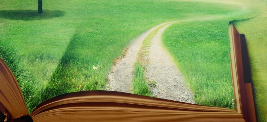 Wpływ książek